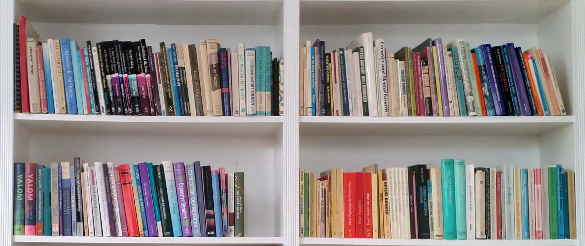 Udsnit af reol - Psykoterapi, bøger og supervision af Lise Winther Jensen
